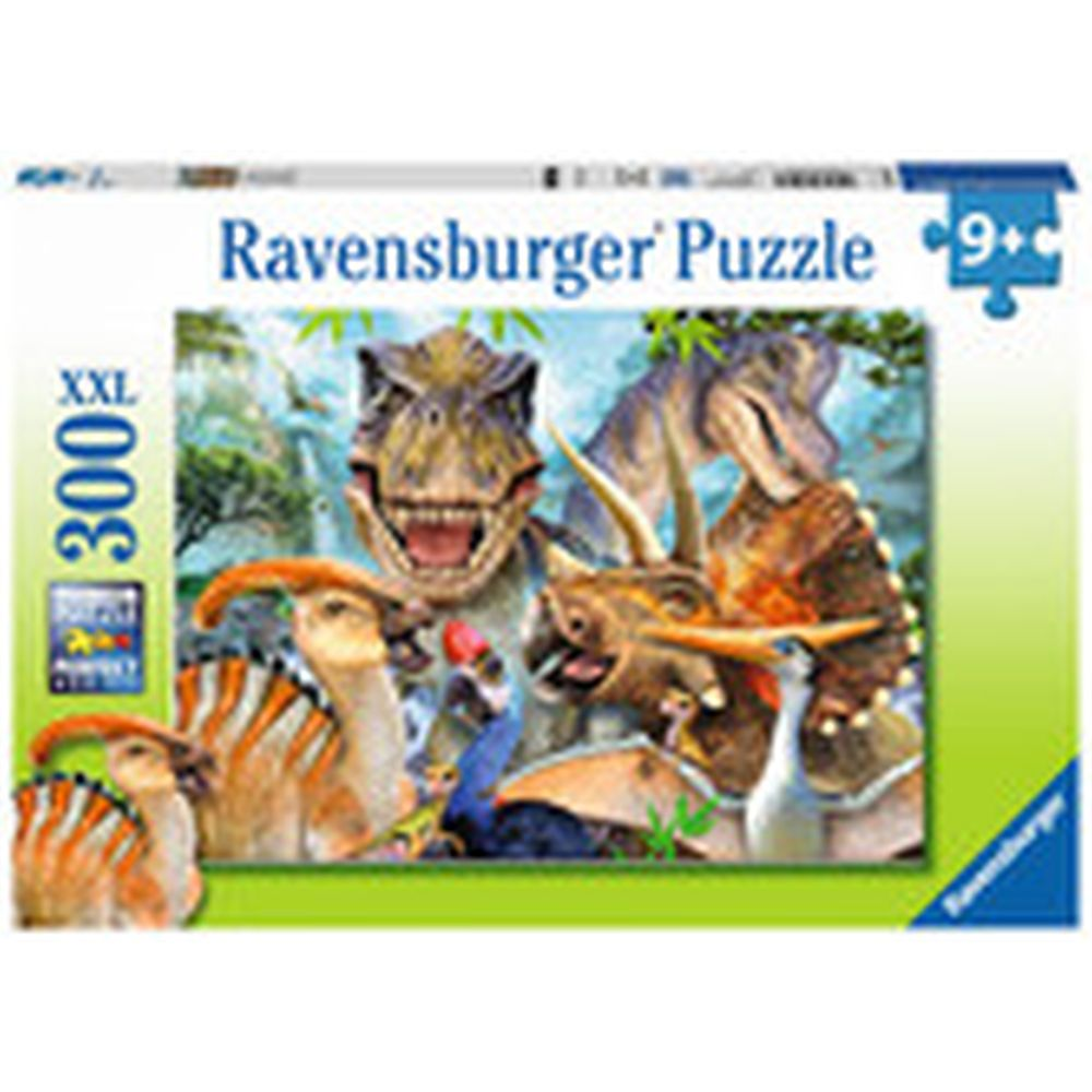 Age 9+ 300 Piece Jigsaw Puzzles View