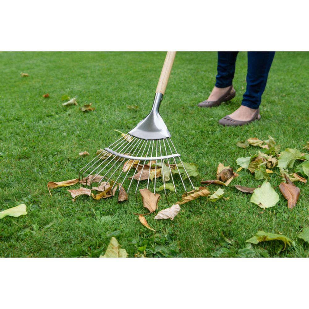 Stainless Steel Long Handled Lawn / Leaf