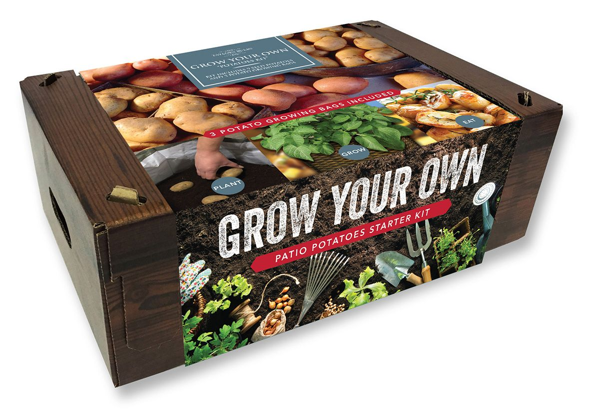 Grow your own Seed potato kit